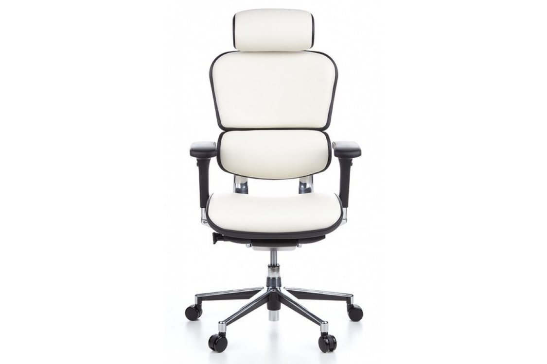 Офисное кресло Comfort Seating Ergohuman Plus