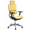 Кресло директора Comfort Seating Ergohuman Plus