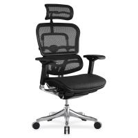 Эргономичное кресло Ergohuman Plus Comfort Seating