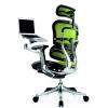 Эргономичное кресло Ergohuman Plus