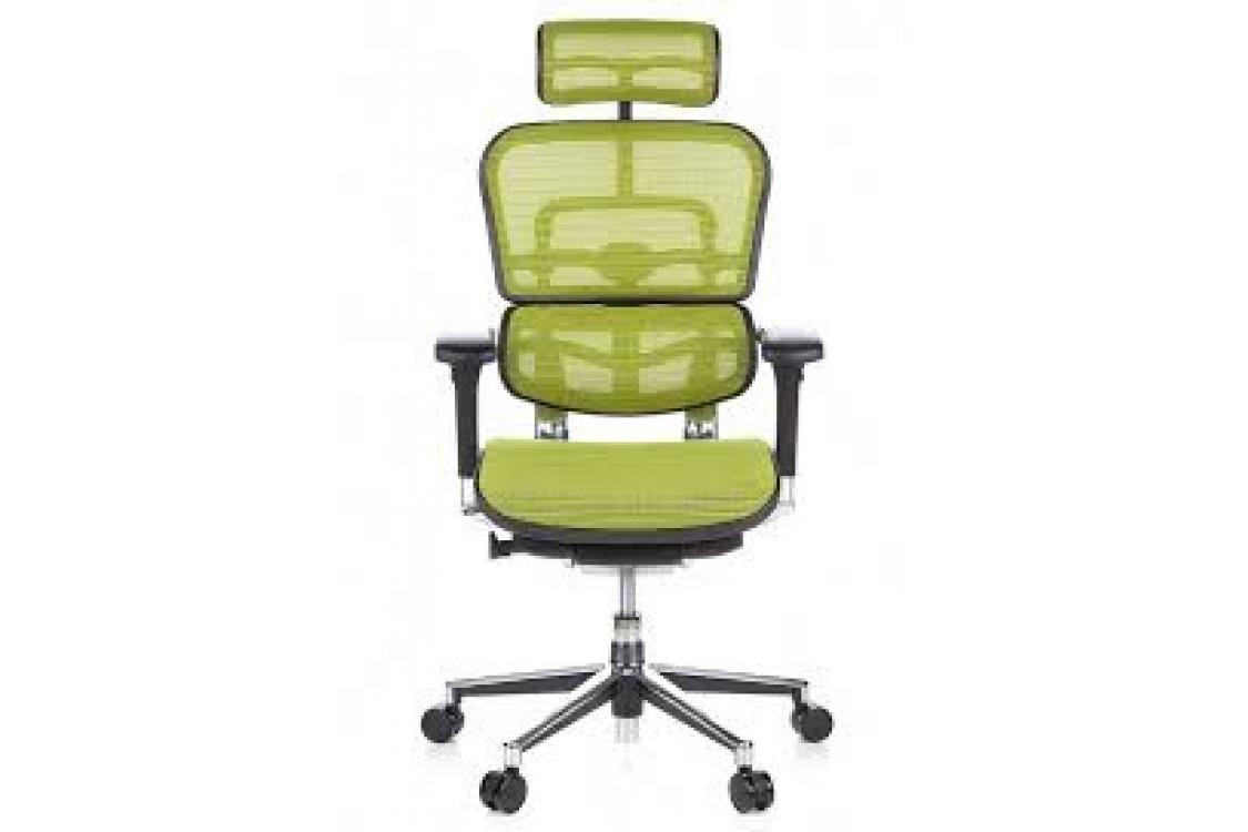 Кресло Ergohuman Plus Green