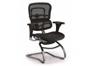 Кресло Ergohuman Standart для посетителя