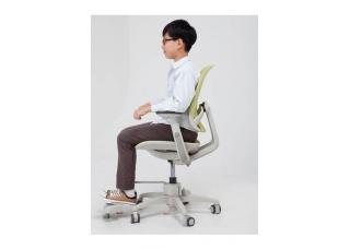 Детское кресло Duorest Duoflex Junior